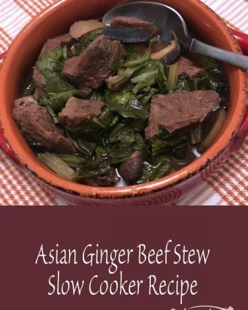 Asian Ginger Beef Stew Slow Cooker Recipe